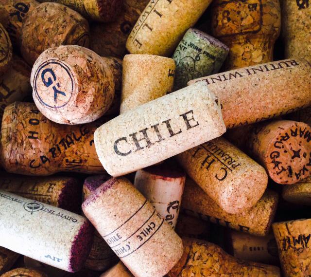 vinhos-chilenos