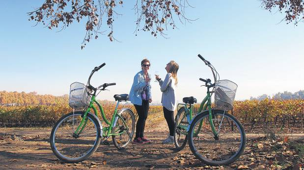 bicicleta-verde-cousino-macul