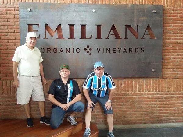 vinha-emiliana-3